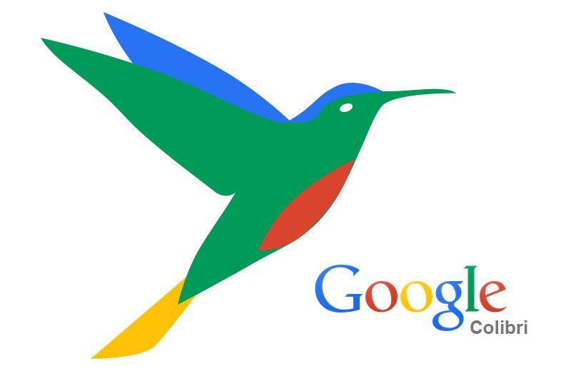 SEO Google Colibrí